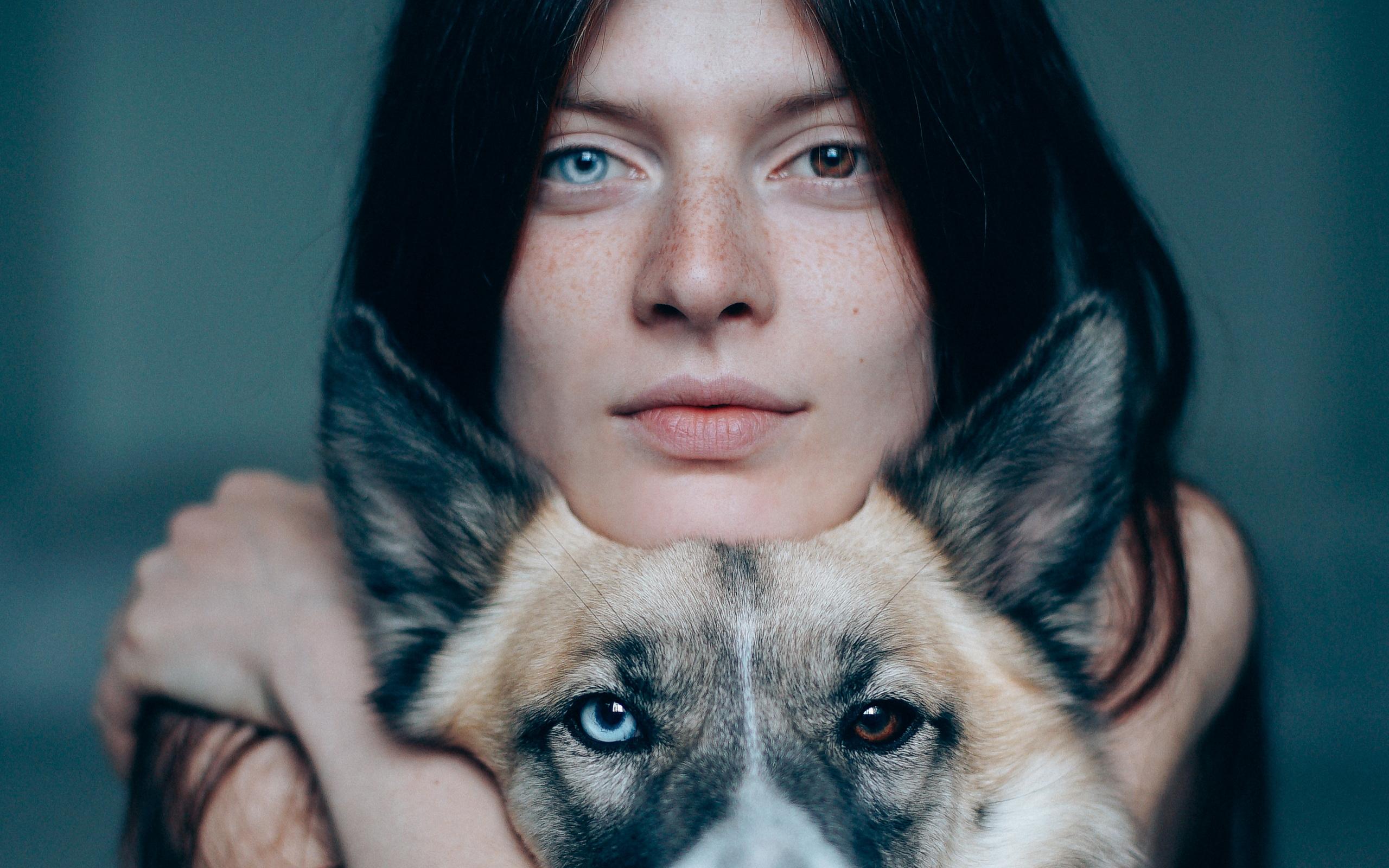 Heterochromia Dog Pictures