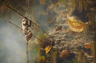 Il miele psichedelico dell'Himalaya e la sua misteriosa storia